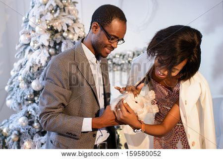 Happy Afro-american couple holdind the small white rabbit near the Christmas Tree on the eve of The New Year