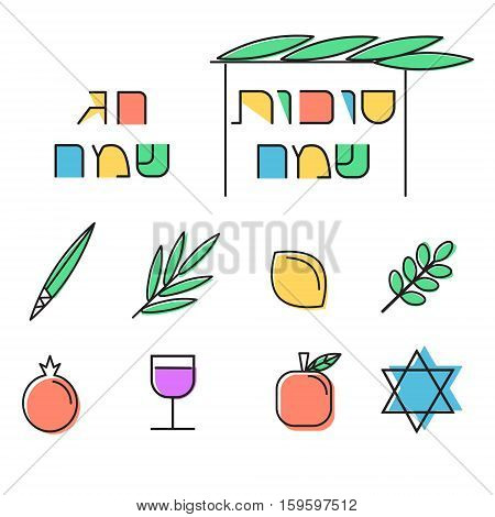 Sukkot design elements. Linear icons set. Four species for Jewish Holiday Sukkot: palm branch, willow, myrtle leaves and etrog. Hebrew text Happy Sukkot and Happy holiday . Vector illustration