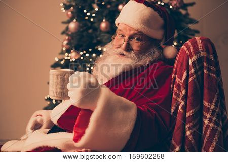 Happy Santa Claus Wearing Red Costume Near Pine Holding Cup Of Hot Drink