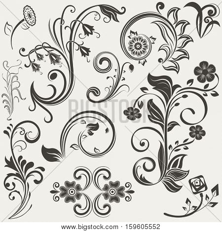 Vintage floral design elements set. Flowers and branches shapes. Vector illustration.