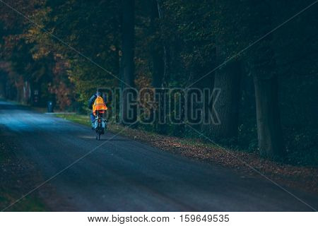Biker With Safety Vest On Road In Autumn Forest At Dusk. Exel. Achterhoek. Gelderland. The Netherlan
