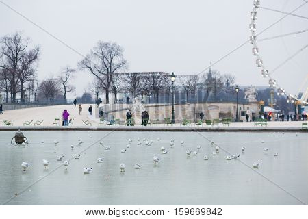 Cold Winter Day In Paris