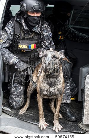 TIMISOARA ROMANIA - DECEMBER 1 2016: Military parade at Romanian National Day. Cop simulating a mission with dog. Picture is taken in front of the Administrative Palace in Timisoara.