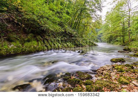 Mountain river Radovna in the Vintgar gorge, a natural Triglav national Park, Slovenia.