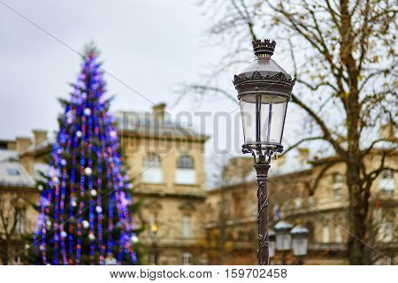Streetlamp And Christmas Tree In The Background