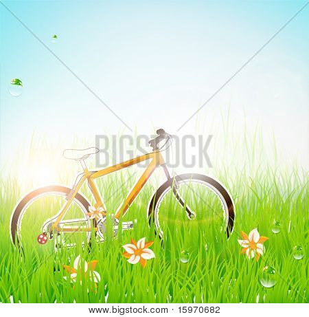 poster of Summer grass banner with flowers, ladybird, drops, sun shine and bike. eps 10.