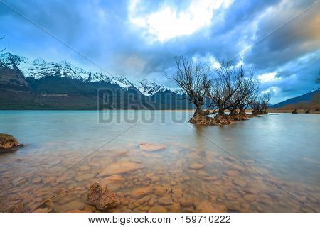 The Famous Willow Trees of Glenorchy New Zealand
