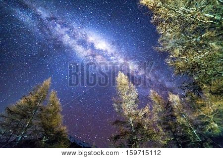 Milky way at Glentanner campsite, New Zealand