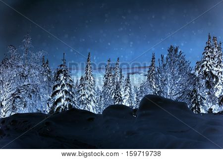 snowstorm шт winter Кussia forest is very nice
