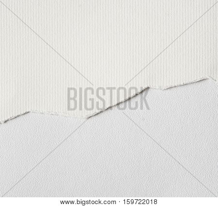 Ripped white textured paper background. Close up