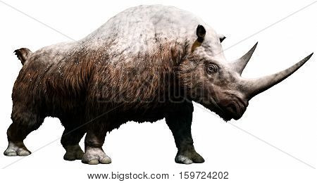 Woolly rhinoceros covered in snow 3D illustration