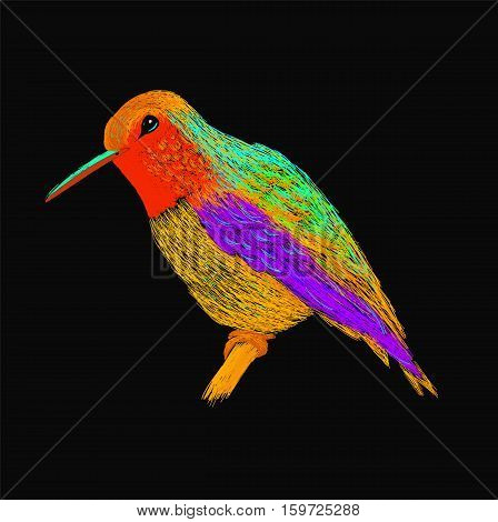 Hummingbird with colourful glossy plumage. Modern pop art style. Colorful bird, black background. Vector illustration of colibri for greeting card, invitation, print, web project. Bright and vivid colors.