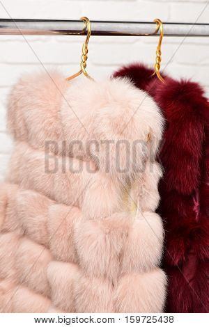 Fashionable Fur On Hangers