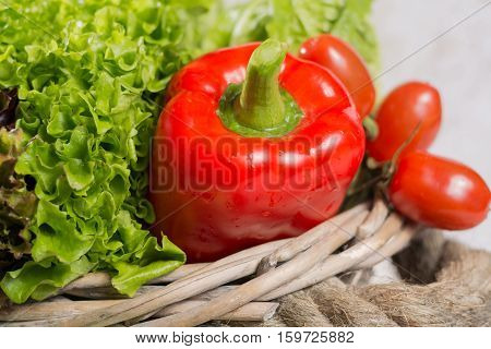 Ingredients for fresh spring healthy green salad- green and red fresh lettuce salad leaves paprika tomatoes - healthy low calorie food