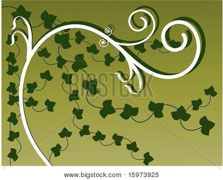 vines vector three of three