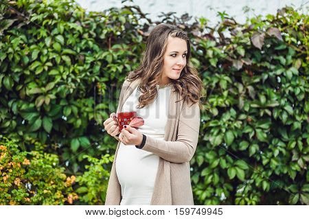A Pregnant Young Woman Standing At The Hedge And Drinking From A Cup. Pregnant Woman Relaxing In The