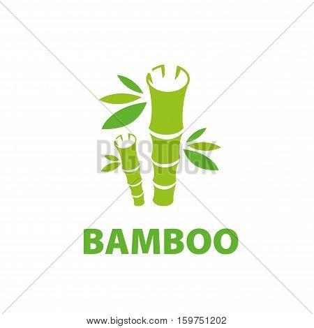 Template design logo bamboo. Vector illustration of icon