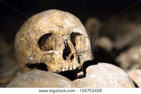 Closeup of an old skull in the catacombs of Paris France