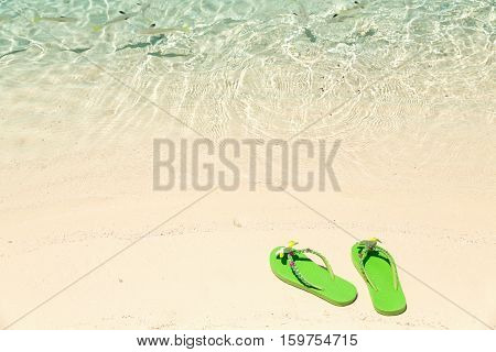 Tropical vacation concept--Green flip-flops on a sandy ocean beach with small fish in the water