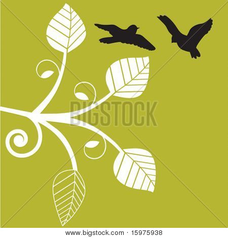 birds playing in flight with funky vine