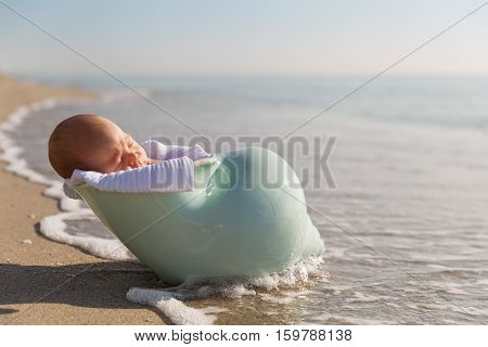 Adorable newborn child in a nutshell on the ocean shore. Cute baby boy on the beach. New life concept.