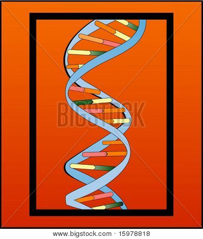 dna strand in frame