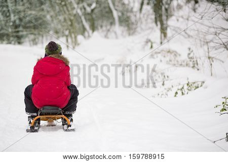 Back view on cut kid boy sliding down the hill in the winter forest and having fun with snow. Child playing outdoors. Lifestyle concept
