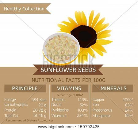 Sunflower seeds health benefits. Vector illustration with useful nutritional facts. Essential vitamins and minerals in healthy food. Medical, healthcare and dietory concept.