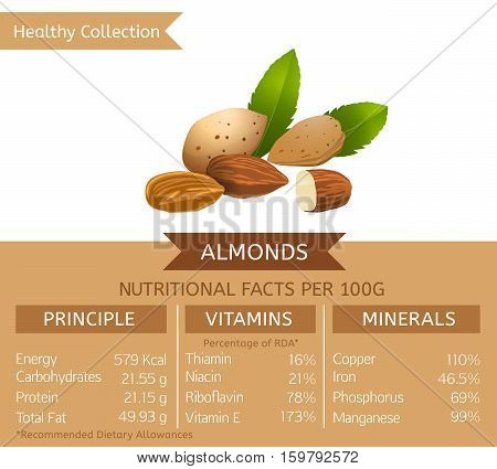 Almonds health benefits. Vector illustration with useful nutritional facts. Essential vitamins and minerals in healthy food. Medical, healthcare and dietory concept.