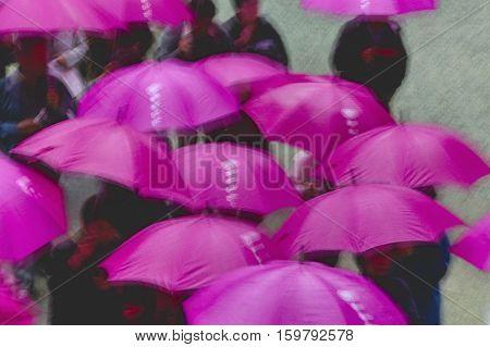 Kapan, Nikko, Tosho-gu Shinto shrine, People under purple umbrellas, elevated view