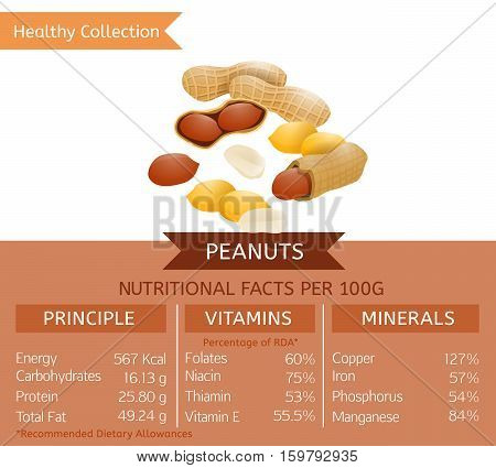 Peanuts health benefits. Vector illustration with useful nutritional facts. Essential vitamins and minerals in healthy food. Medical, healthcare and dietory concept.