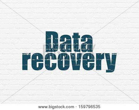 Data concept: Painted blue text Data Recovery on White Brick wall background