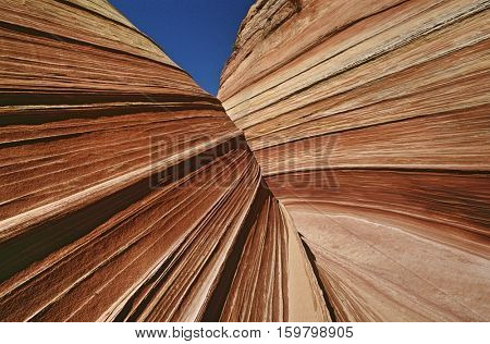 USA, Arizona, Paria Canyon-Vermilion Cliffs Wilderness, sandstone rock formations, close up