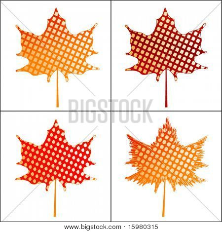 seamless pattern on maple leaves - 4 choices