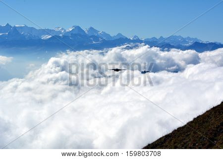 Sky and Peaks towering above the clouds