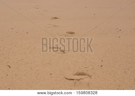 Two well-shaped human footprints in the sand.