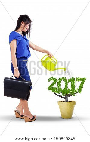 Young businesswoman using a watering can to pour water into the tree on a pot with leaves shaped numbers 2017