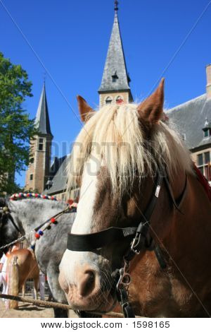beautiful ring riding scenery of middelburg in south of holland poster