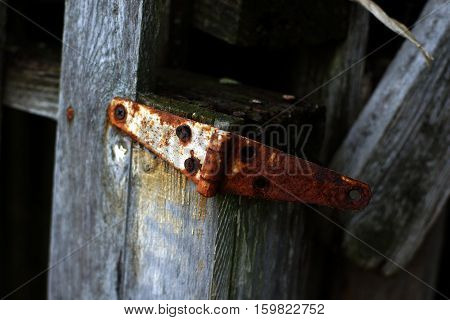 Rusty antique metal hinge on barn wood with screw heads