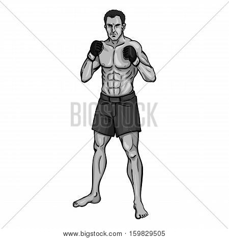 Vector Single Cartoon Mma Fighter