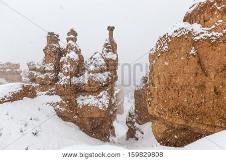 Winter weather and falling snow on the hoodoos at Bryce Canyon National Park in Southern Utah.