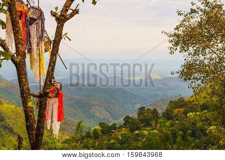 landscape of Srilanka with trees, and flags