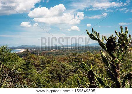 Famous Arboretum Lussich Botanical Park and the Solana Beach in Punta del Este Maldonado Department of Uruguay