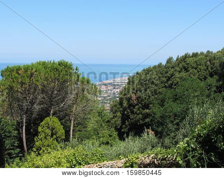 Panoramic aerial glimpse into the vegetative landscape of Livorno city from the nearby hills of Montenero Tuscany Italy