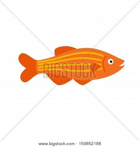 orange fish. striped aquarium exotic fish tropical marine fish. vector