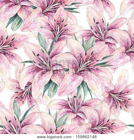 Pink lily flowers isolated on white background. Watercolor handwork illustration. Drawing of blooming lily with green leaves. Seamless pattern with lilies for design.