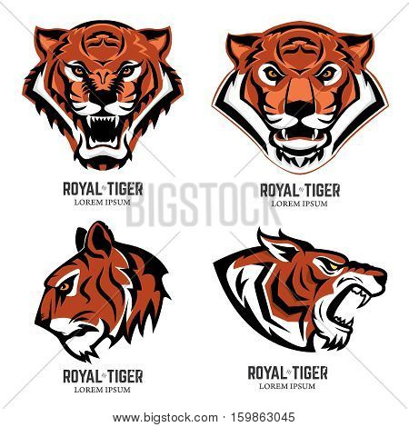 Set of the tiger heads. Sport team mascot. Design element for logo label emblem sign brand mark. Vector illustration.