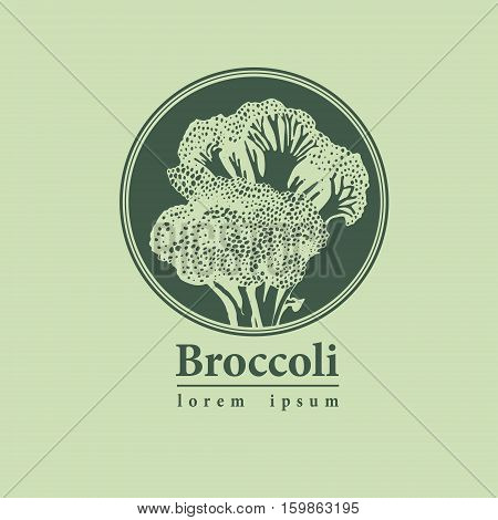 Broccoli Hand Drawn Vector Logo.