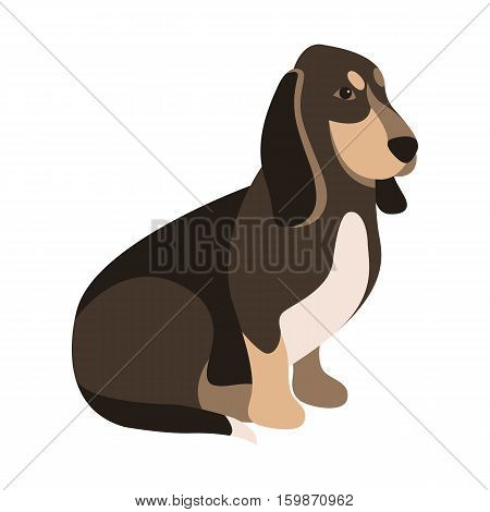 basset hound vector illustration style Flat side