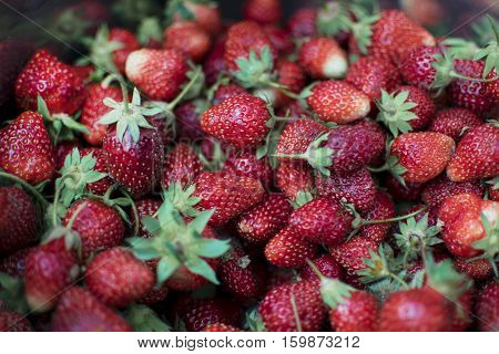 Natural red strawberries in a basket only that the meeting a farmer from the garden. On berries have traces of earth and sand.